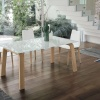 Deimos wood dining  table
