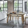 Marte wood dining table